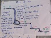 Bridget's river of life