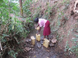 Collecting water for housebuilding